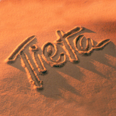 http://televisual.files.wordpress.com/2008/09/logo_tieta.jpg